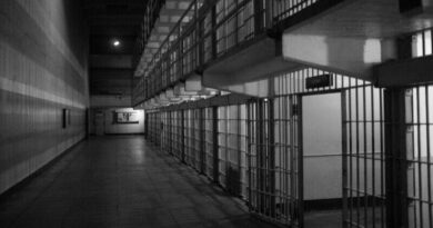 A cosa serve il carcere
