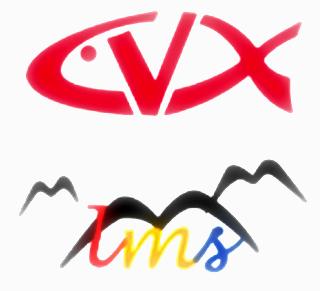 cvx | cvxlms.it