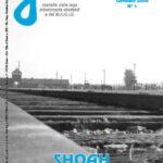 Shoah, la storia di Frankl e Levi (Gentes, 01/2008)